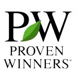 proven winner